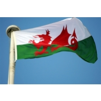 Broadband rollout 'vital to Wales'